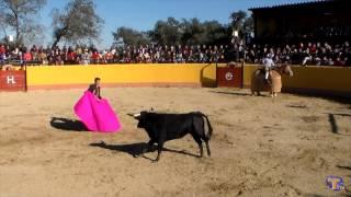 preview picture of video 'FESTIVAL TAURINO FLAMENCO CON EMILO DE JUSTO Y ALBERTO MANUEL EN TORREJONCILLO'