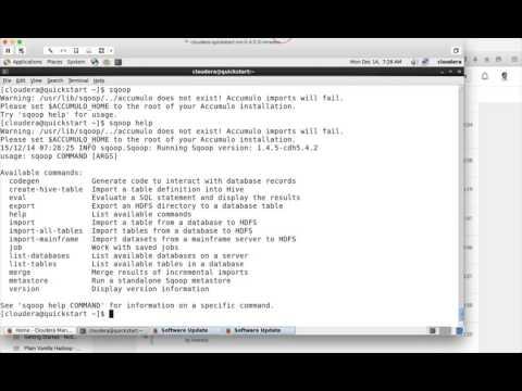 Hadoop Certification - Sqoop commands - list and eval - YouTube