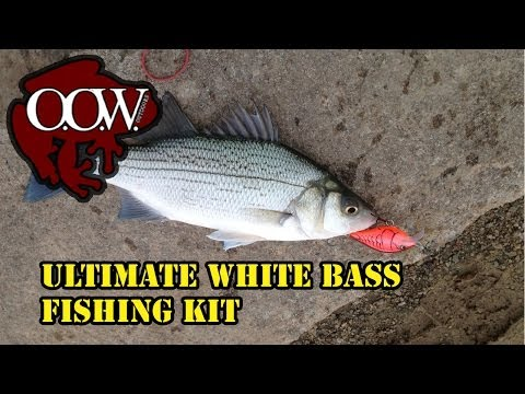 Ultimate White Bass Fishing Starter Kit – OOW Outdoors