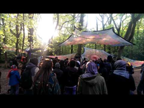 HaKuNa MaTaTa ૐ Psychedelic Forest Party