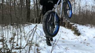 Browner, the stockade skinny feature at Hillside Park Mtb Trail.