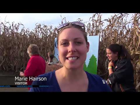 An Amazing Corn Maze in Pennsylvania
