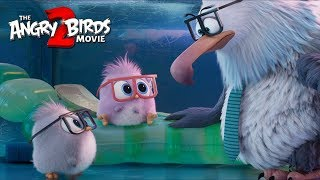 THE ANGRY BIRDS MOVIE 2 - Take Your Hatchlings to Work Day with Eugenio Derbez