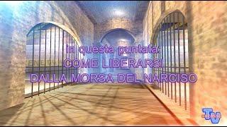 'Come liberarsi dalla morsa del narciso' episoode image