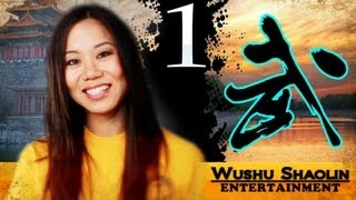 Shaolin Kung Fu Online Tutorial Free : Tong Bi Quan 通臂拳 Section 1