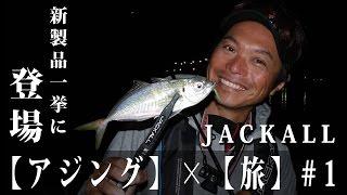 【アジング】 岸釣り武者修行の旅 #1