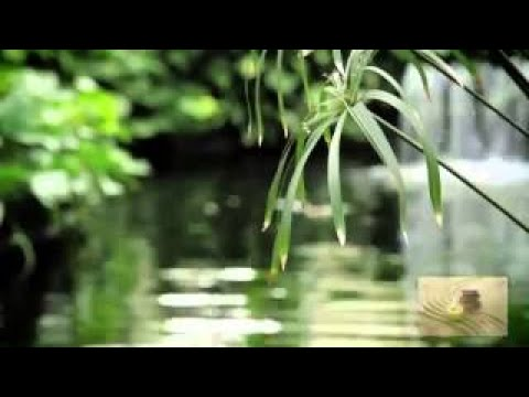 Music for Stress Relief, Classical Music for Relaxation, Instrumental Music, Mozart, E092