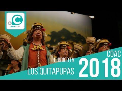 Chirigota, Los quitapupas - Preliminares HD Mp4 3GP Video and MP3