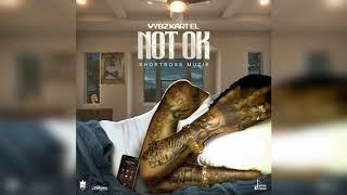 Vybz Kartel - Not Ok (Official Audio)