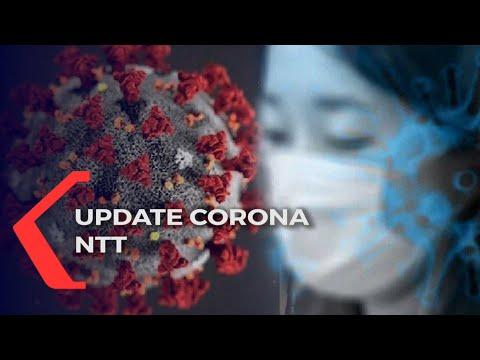 update corona ntt senin tambah kasus covid- akibat transmisi lokal kian meningkat