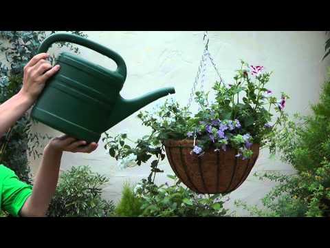 14 Cómo crear una cesta colgante con flores