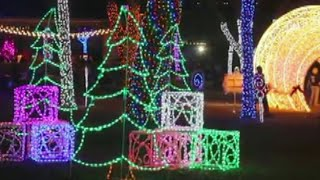 Wild Wednesday Dallas Zoo Lights Haystack Tv