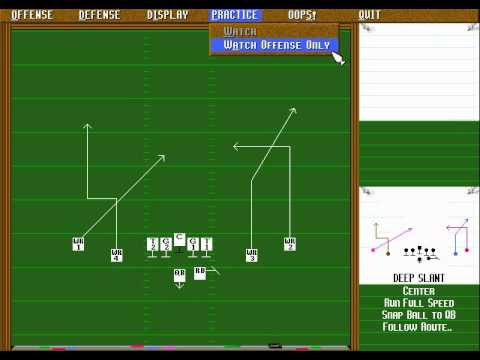 Unnecessary Roughness '95 Megadrive
