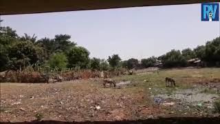 Thierno Alassane Sall au Pont de Kolda sur le fleuve Casamance – Version Pulaar