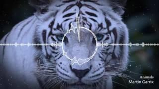Nhạc Điện Tử Martin Garrix   Animals