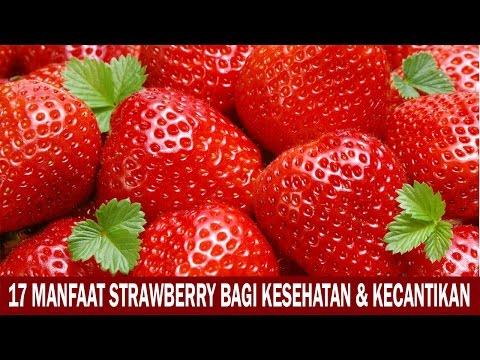 Video 17 Manfaat Strawberry Bagi Kesehatan dan Kecantikan
