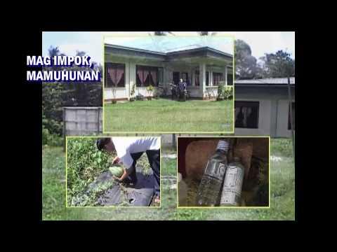 Tentorium parasites sa katawan ng tao
