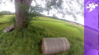 Tree Circles Inside and Out - 3 Inch FPV Freestyle Acro Drone Tight Spaces Practice That Fails