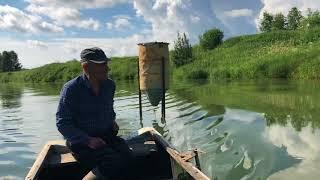Пруд для рыбалки в пермском крае