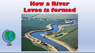Natural River Levees - How are they formed? Labelled diagram and explanation
