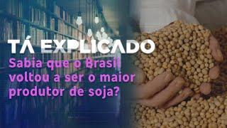 Sabia que o Brasil voltou ao posto de maior produtor de soja do mundo neste ano? | Tá Explicado