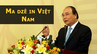 Image result for Phúc Niểng