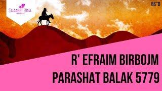 Parashá Balak
