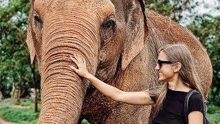 brīvdienas Samui | ziloņu saudzētava, velo, ballīte | Taizeme vlogs #4