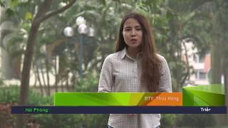 NCKN Mô Hình Trang Trại 5 Con Vật Nuôi Ninh Bình