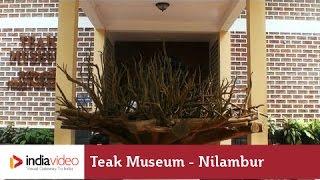 Teak Museum, Nilambur