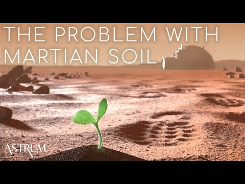Can Martian soil support plant life?