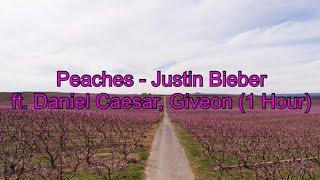 Peaches by Justin Bieber ft. Daniel Caesar, Giveon (1 Hour CLEAN w/ Lyrics)