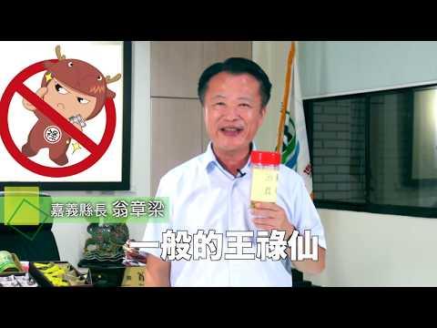 嘉義縣政府檢舉王祿仙宣導短片