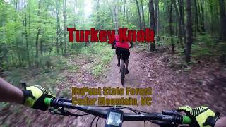 Turkey Knob - Downhill to Briery Fork