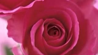 O Yaara [Full Song] (HD) - Mashooq - YouTube