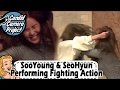 Prank Cam Project Seohyun Performing Fighting Action at the Fake Audition 20170212