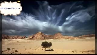 Пророк Муса ( а.с ) и грешник которого простил Аллах