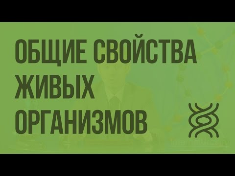 Общие свойства живых организмов. Видеоурок по биологии 9 класс