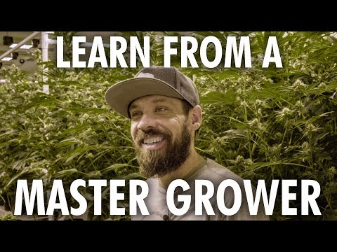 Learn from a Master Grower
