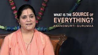 What is the source of everything? | Anandmurti Gurumaa