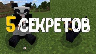 5 Секретов в Minecraft PE 1.8.0.8!