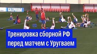 Тренировка российской сборной перед матчем с Уругваем