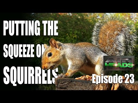 Putting the Squeeze on Squirrels – AirHeads, episode 23