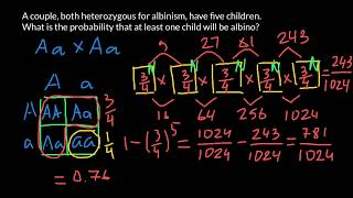 How To Solve Simple Probability Problems In Genetics
