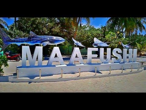 Мальдивы 2019 остров Маафуши. Maldives 2019. Maafushi Island
