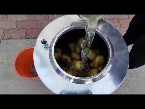 Potato Peeler ( 10 KG )