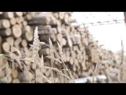 Фанера ламинированная Плайтерра (1220х2440х21мм)