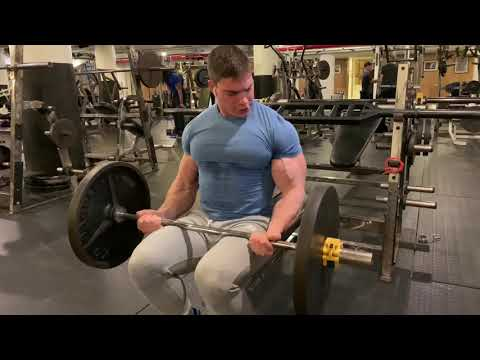 Seated barbell curls
