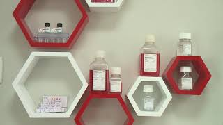Thuốc tế bào gốc- Một sản phẩm của Viện tế bào gốc