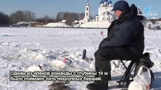 Рыбалка на горьковском море.